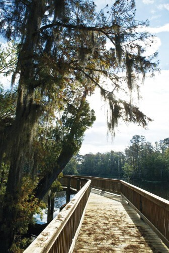 Mobile County's River Delta Marina and Campground in Creola provides one of the few public accesses on the 250,000-acre Mobile-Tensaw River Delta.