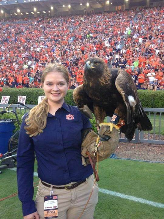 Her work with eagles brings Spirit to the field