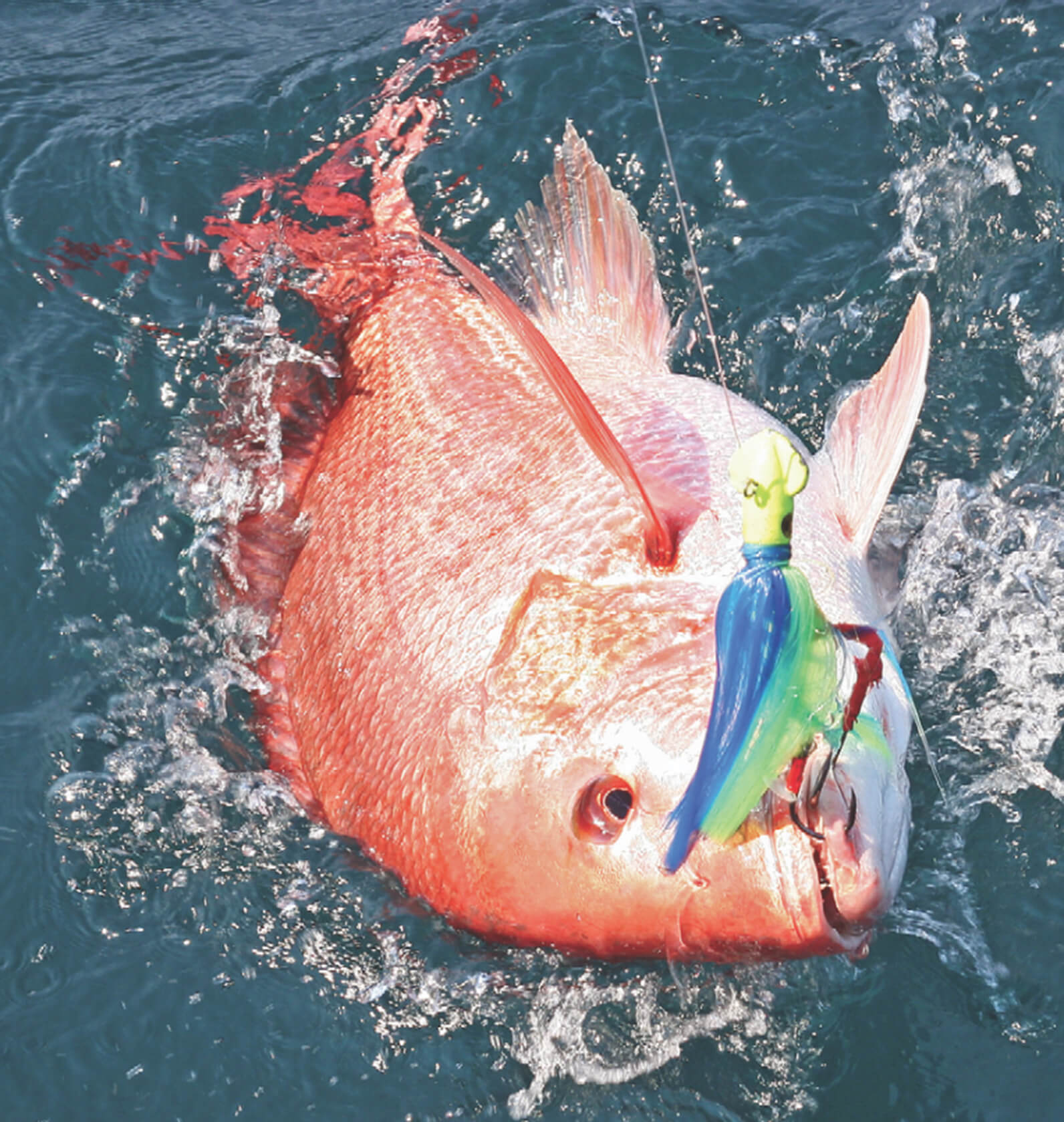Red snapper adds spark to alabama deep sea fishing rodeo for Deep sea fishing mobile al