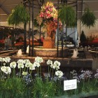 Landscape, patio and potting ideas will be on display at the annual Festival of Flowers March 26.