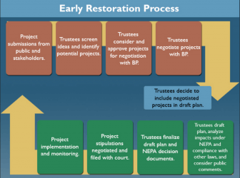 A simplified breakdown of how project submissions become a reality through Natural Resource Damage Assessment funding.