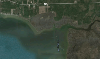 Fowl River Bay (Google Maps)