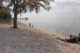 (Eric Mann/Lagniappe) The city of Fairhope is funding half of a $30,000 beach survey and management plan aimed at combating erosion issues caused  by the loss of natural nourishment processes.