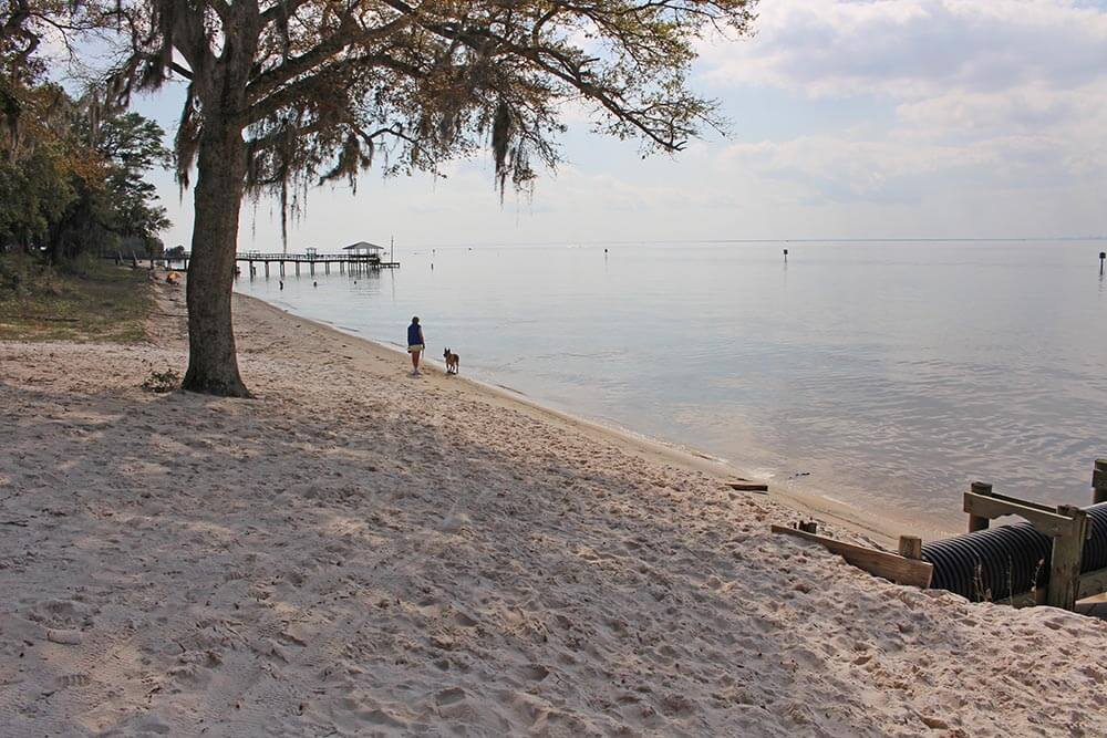 Fairhope developing $30,000 beach erosion plan