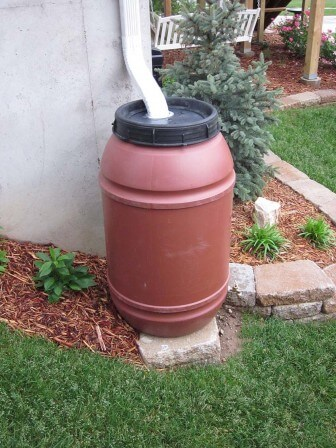 (Photo | ACES) A simple rain barrel design incorporates a 42-55 gallon barrel connected to a rain gutter.