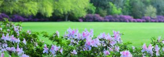 Photo | Bellingrath Gardens and Home