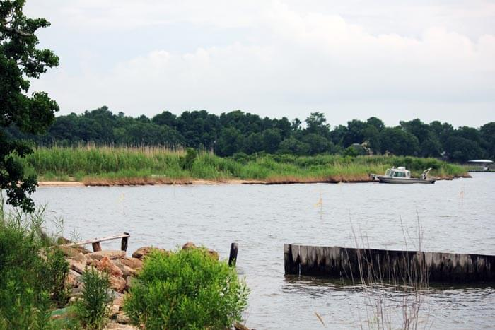 MBNEP to begin wetland restoration on Mon Louis