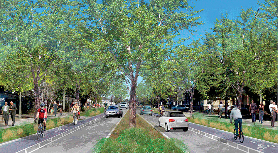 Tree Commission approves removal of 48 live oaks for grant-funded project