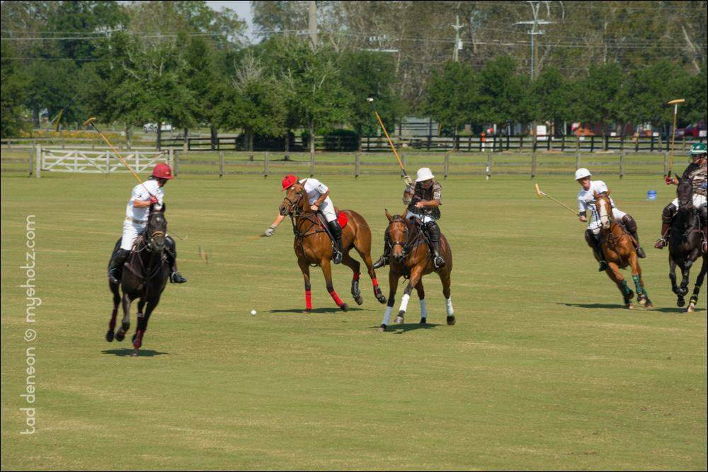 Polo at the Point combines sports, parties, charities on Saturday