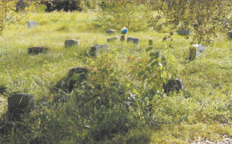 Councilman levon Manzie says the city should help maintain private cemeteries like Oaklawn that have become overgrown.
