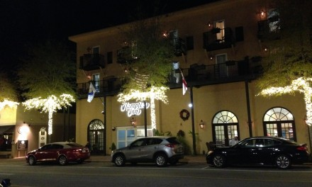 Last-minute lights ordered for Fairhope's bare branches