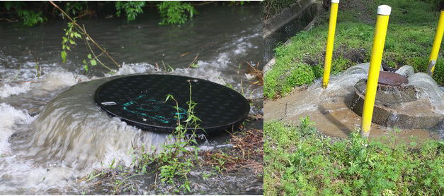 Environmentalists push for better notification of sewage spills