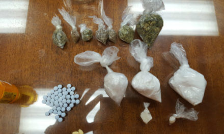 Police seize cocaine, pills on Woodland Road