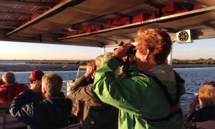 Birdwatchers and nature lovers gearing up for Alabama Coastal BirdFest