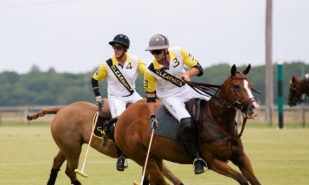 Polo at the Point cancelled for this year