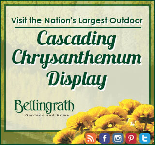 Bellingrath November