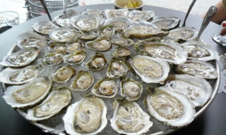 Hangout Oyster Cook-Off in its 10th year