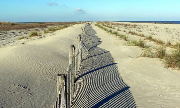 NFWF approves $33 Million of coastal restoration projects