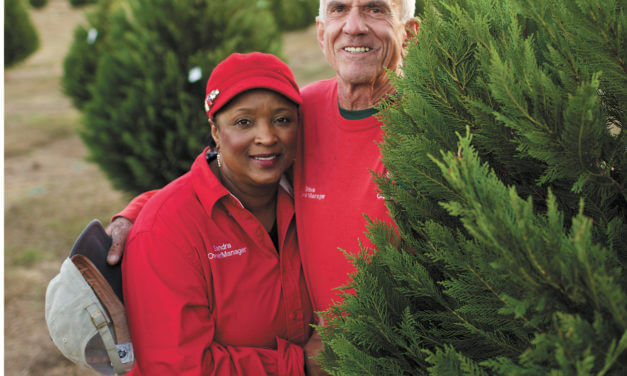 Local Christmas tree farms continue to court customers