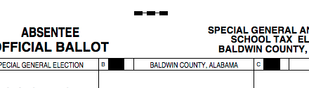 Baldwin voters have option to reinstate 1 mill school tax