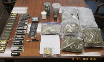 Police: Family's Winnebago hiding marijuana, LSD