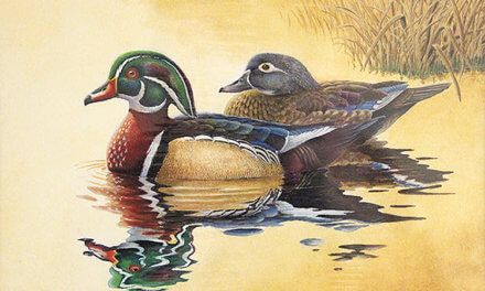 Ruling elevates Mobilian to waterfowl art contest winner