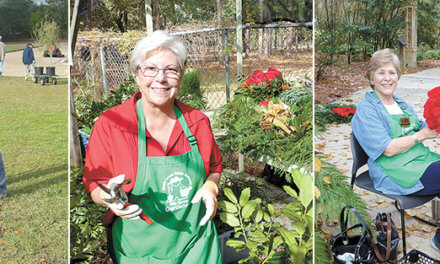 Become a Master Gardener this year