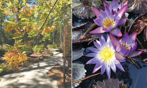 Mobile Botanical Gardens offers history infused with beauty