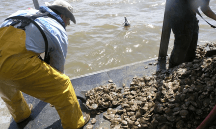 State leaders discuss ongoing BP oil spill restoration efforts