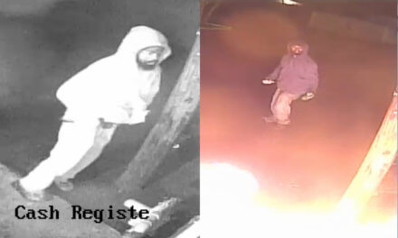 Investigators trying to ID suspected arsonist