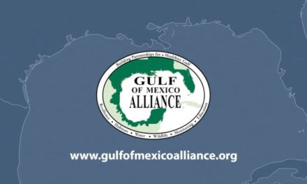 Gulf of Mexico Alliance workshop takes aim at trash