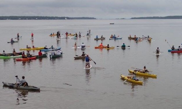 Weeks Bay Foundation's Pelican Paddle returns Aug. 3