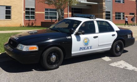 Fairhope Police Department reports: June 28-July 7, 2019
