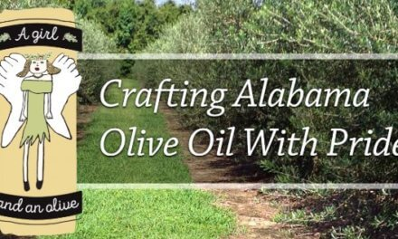 Lillian olive grove is a rare site on Alabama's farm scene
