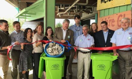 Oyster recycling programs helping revive reefs, gardens