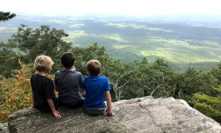 Nonprofit aims to supplement state parks