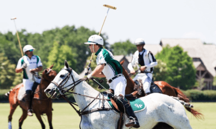 Polo at the Point returns to mark 30th anniversary