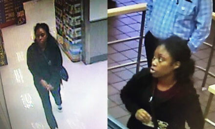MFRD: Unknown woman lit fires in local businesses