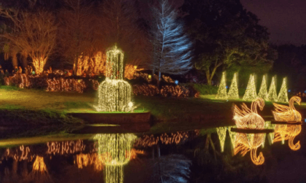 Bellingrath Gardens: A Magic Christmas in Lights Preview Event