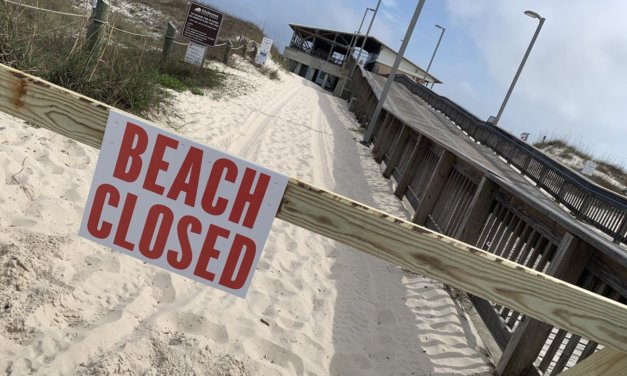 State task force weighing options to reopen economy