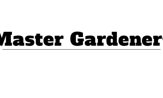 Think about becoming a Master Gardener in 2020