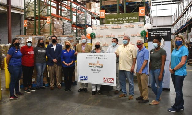 Feeding the Gulf Coast accepts corporate donation of 64,800 eggs