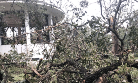 Bienville Square hit hard, rest of downtown mostly spared by Sally