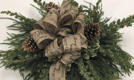 Bring Nature Inside: Make decorations from your yard