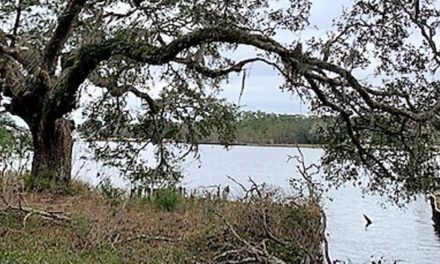 Baldwin County working on two new boat launches