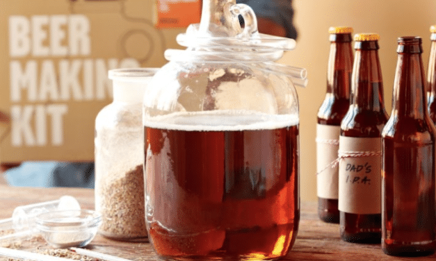 How to repurpose spent grains after brewing beer