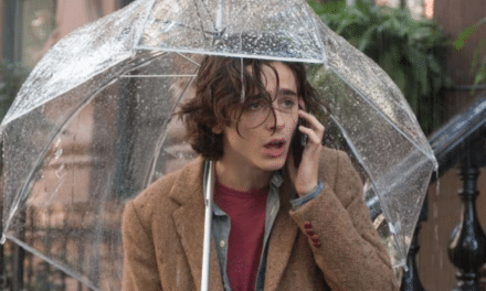 A light and intellectual vehicle for Timothee Chalamet — cursed by Woody Allen