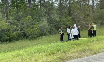 MPD investigates death of woman found on the side of Rangeline Road