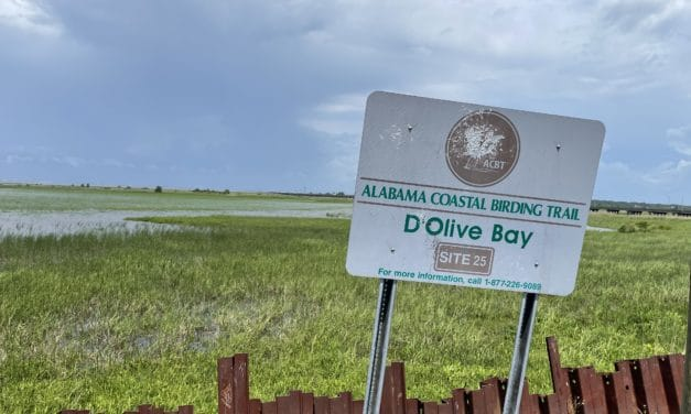 City of Daphne agrees to purchase small waterfront property