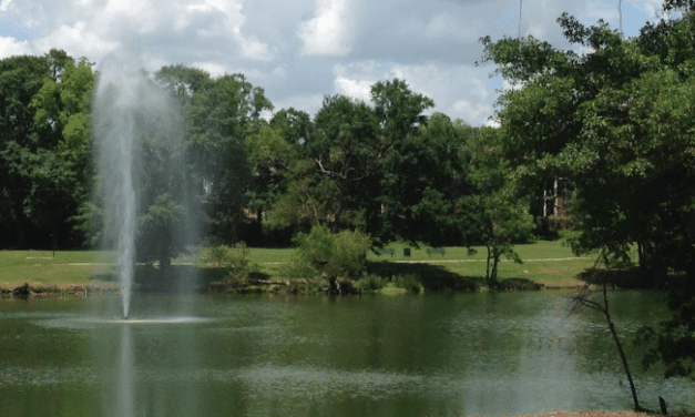 State to provide fishing lessons at Tricentennial Park